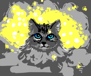 A Beautiful Fluffy Grey Cat With Blue Eyes Drawception
