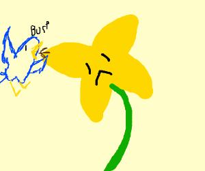 Bird burping on a flower