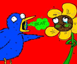 Blue bird burps at yellow flower