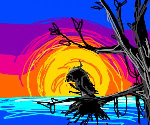 Silhouette Sunset (P.I.O)