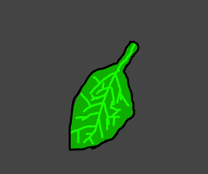 A leaf (or possibly a green bean)