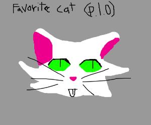 Favorite cat (PIO)