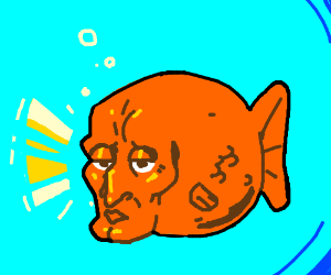 Handsome Squidward as a goldfish.