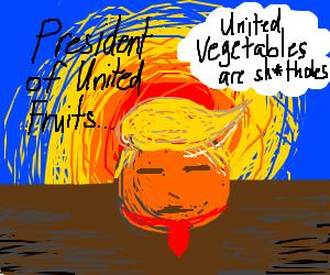 Donald Orange, President of The United Fruits