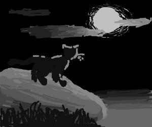 Majestic cat lit my a moon