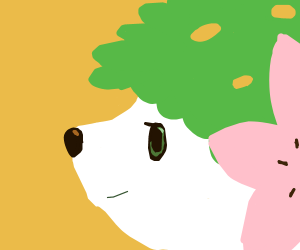 Shaymin the Pokémon