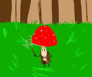 magical mushroom wizard