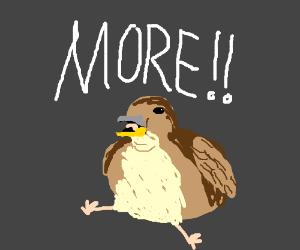 A weird, fat bird (or berd)