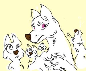 a white wolf