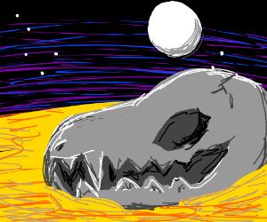 Skull in the Desert Night