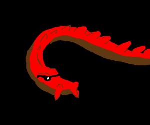 A dragon wearing shades