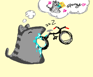 Cat dreams of eating a spong while eating bike