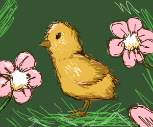 Baby chick in the flowers