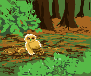 fledgling on the forest floor