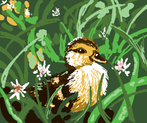 lil duckling sitting in the grass