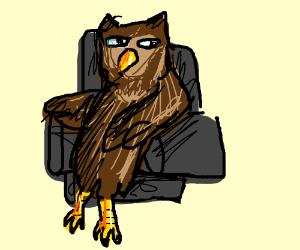 owl in an armchair