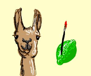 fire alpaca vs  paint tool sai - Drawception