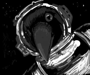 Crow-stronaut