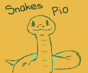 Snakes PIO