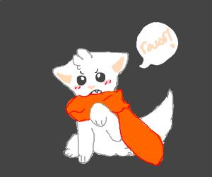 "Smol cat with scarf says ""rawr!"""