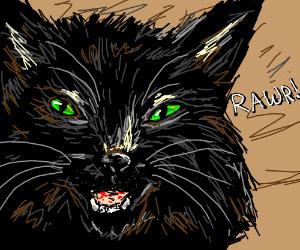 "Black kitten says ""Rawr!"""