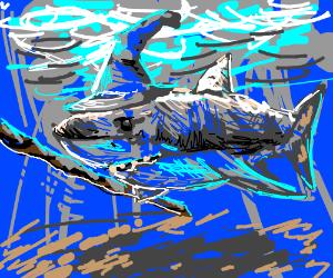 Gandalf the Grey-t white shark