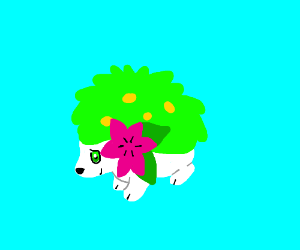 Shaymin (Land Form)