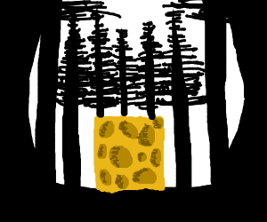 A block of cheese in the woods