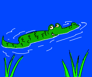 Crocodile (I Love your Style Of Crocodile)