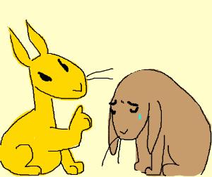 Yellow rabbit scolds brown rabbit.