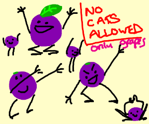 grapes doesn't invite cat to its party