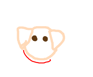 Pig with a red scarf
