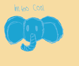 An elephent that is too cool