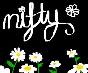 N i f t y  Flowers