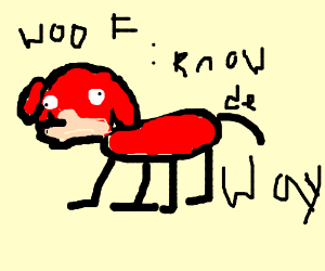 derpy dog knows da wey