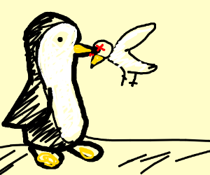 Penguin eats his brother seagull