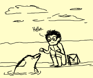 Nerd and Dolphin Meet