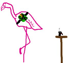 C4 flamingos