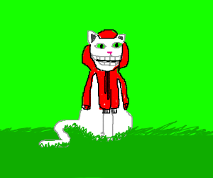 a happy cat in a red hoodie