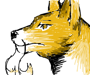 fox with whiskers