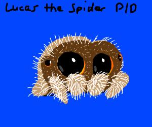 Lucus the Spider PIO