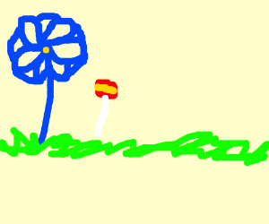 a blue flower and a mini lollipop in the middl