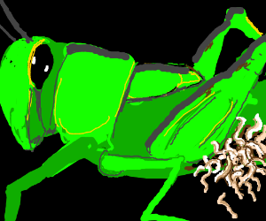 Parasite-worms doing grass-hopper abortion.