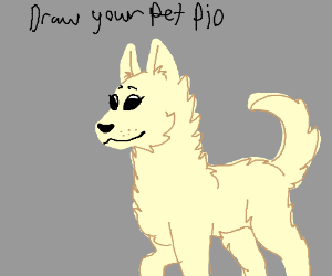 Draw your pet PIO( RIP Gumbo :(