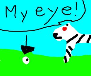 zebra eyeball