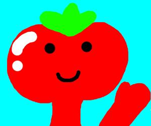 Tomato Head