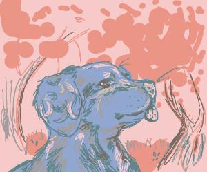 A blue dog