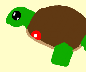 turtle with no leg