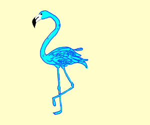 A Blue Flamingo