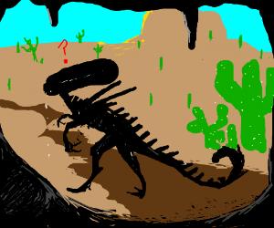 Confused alien in a desert